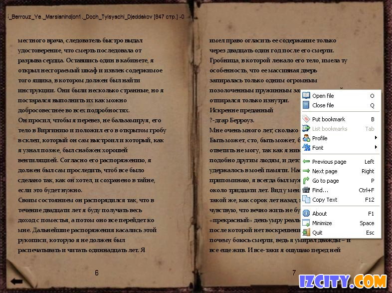 TextReader-old book